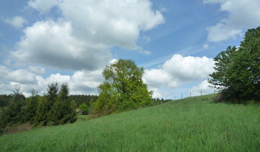 Grundstück in traumhafter Waldrandlage in Nittendorf